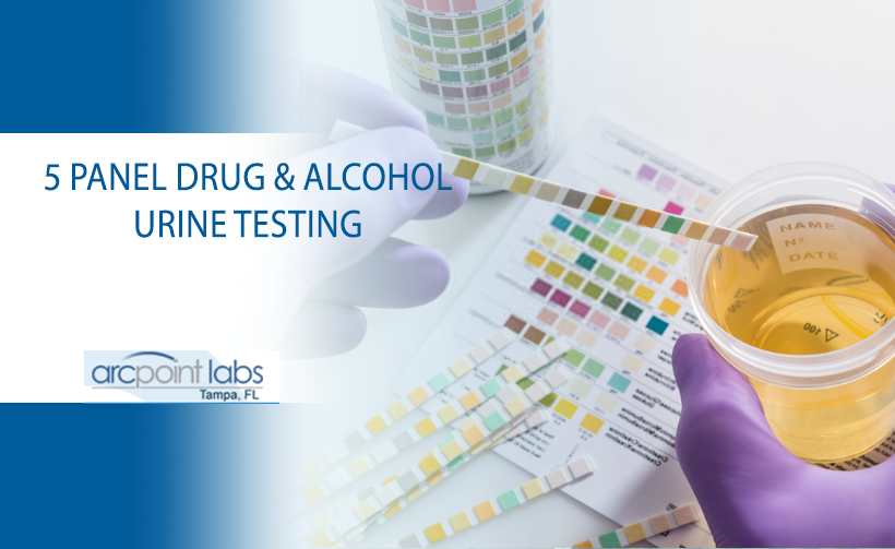 5 panel drug and alcohol urine testing