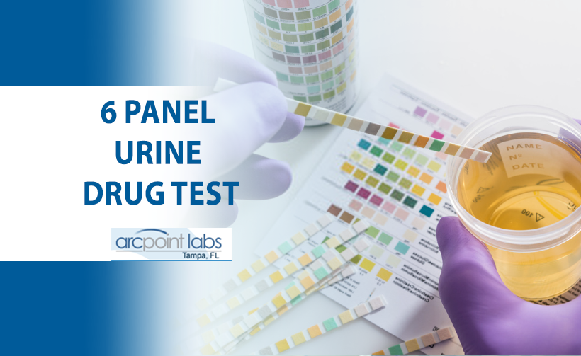 6 panel urine drug test