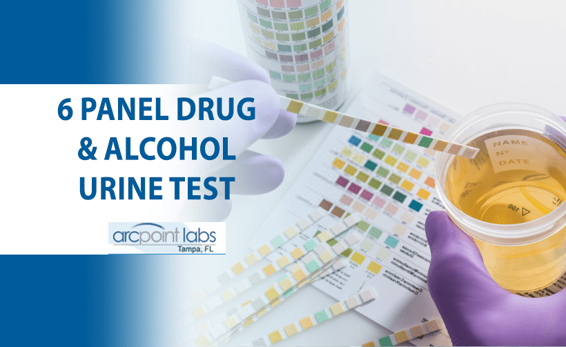 6 panel drug and alcohol urine test