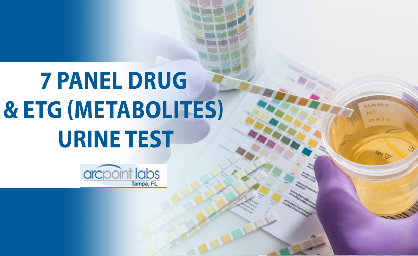 7 panel drug and etg urine test