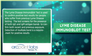 Lyme Disease Immunoblot Test