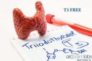 T3 FREE
