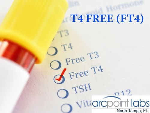 T4 FREE (FT4)
