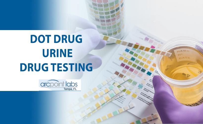 dot drug urine drug testing