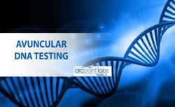 avancular dna testing