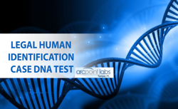 legal human identification case dna test