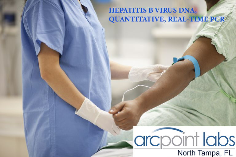 HEPATITIS B VIRUS DNA, QUANTITATIVE, REAL-TIME PCR